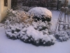 zima9