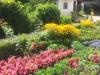 zahrada10