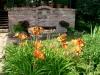 zahrada16
