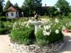 zahrada18