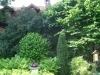 zahrada21