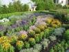 zahrada22