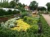 zahrada26