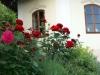 zahrada32