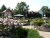 zahrada8