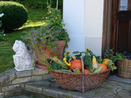 dary-zahrady