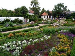 rozkvetla-zahrada-stredu