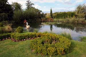rybnik-s-tryskajici-fontanou