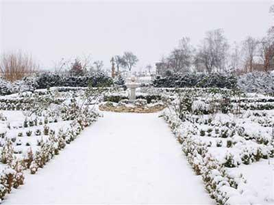 zimni-zahrada