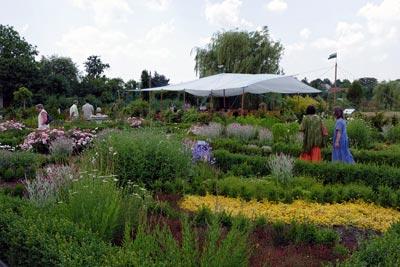 pohled-do-zahrady